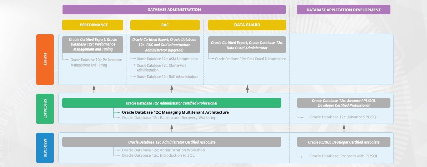 Oracle Database 12c: Managing Multitenant Architecture